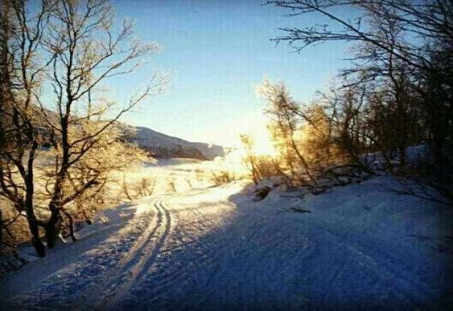 Fantastiske sn? og skiforhold i Oppdal ! :-) Supert p?sketips!