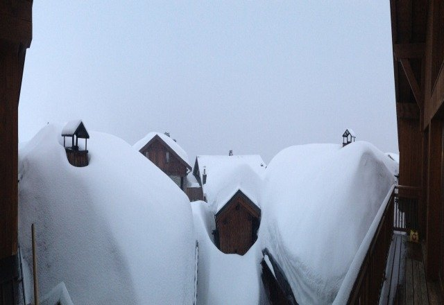more fresh snow overnight (20 or so cm) - wonderful on slope conditions