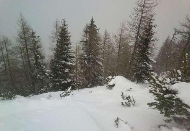 immer noch ausreichend viel Schnee