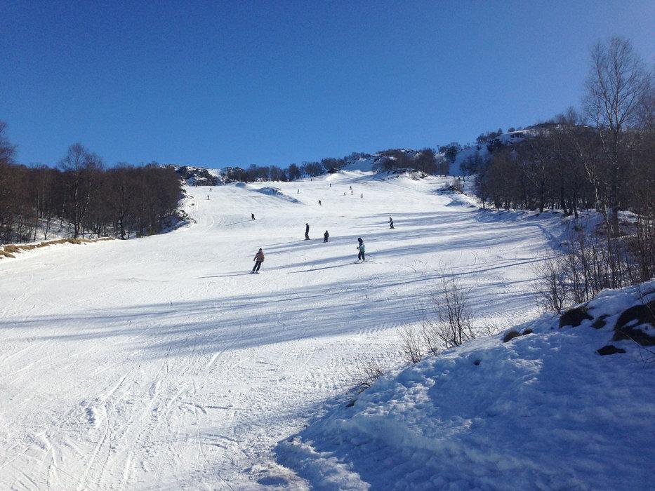 Gilja Alpin Skisenter - Giljastølen