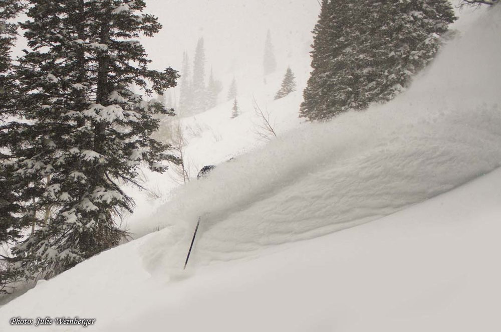 Jackson Hole powder in Jan. 2012Photo by Julie Winberger, courtesy of JHMR