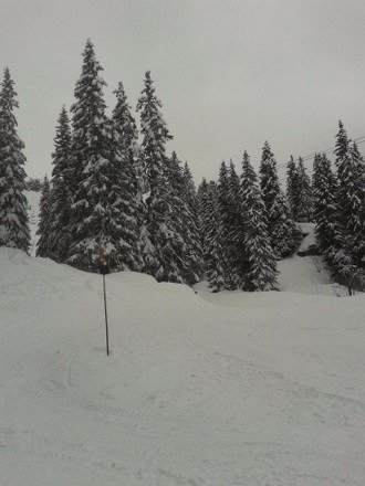 This is Montriond near Morzine as taken by staff at The Lodge Morzine. Their Facebook page has a few more pics. Looks good with more snow to come. I'm out there from the 19th so will report then. ;)
