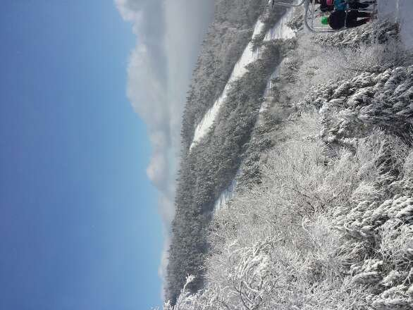 Groomed ice at the bottom. The Adirondack Express is still broken. Gondola lines are terrible in the morning. Stay up top its much better.