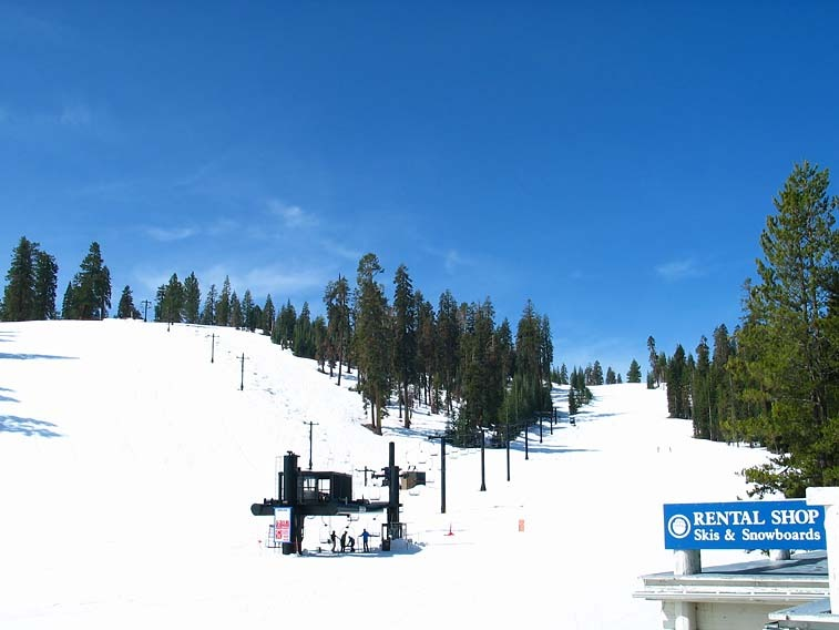 A view up the hill at Badger Pass Ski Area, California