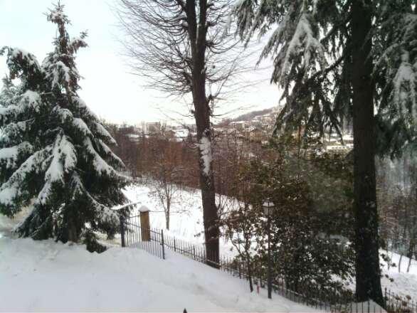 finalmente una nevicata vera speriamo nel bis di domani