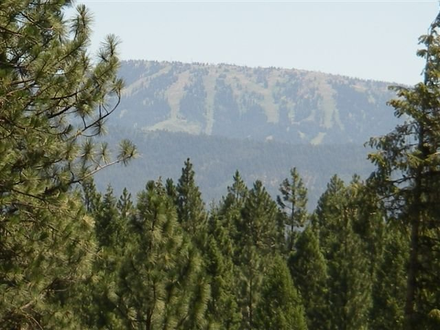 A summer view of Brundage Mountain, Idaho