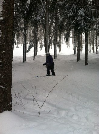 Great tree skiing  with fresh powder everywhere this place rocks