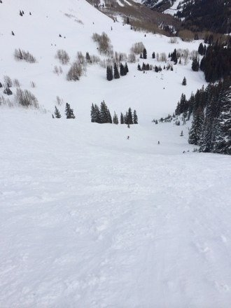 From the top of Scott's Bowl. Snow's great up top, but slush at bottom. Overall great conditions.