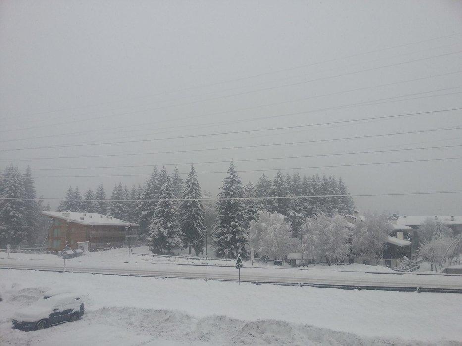 Adamello Ski - Neve fresca 17 Gen 2014
