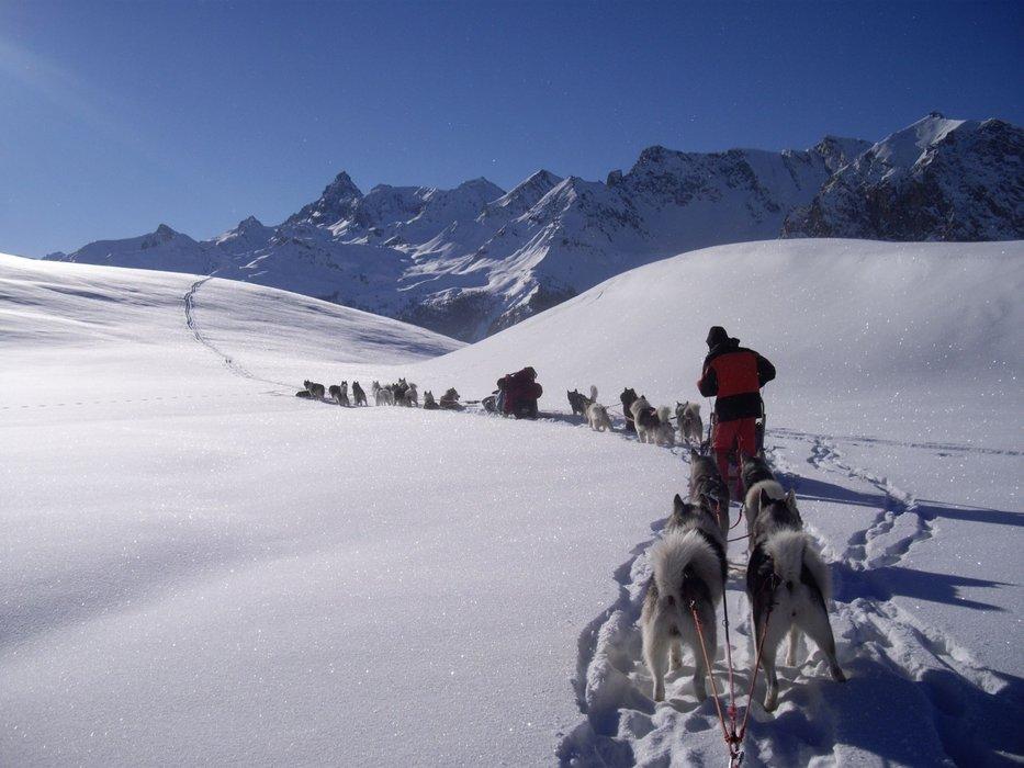 Week-end Saint Valentin en chiens de traîneaux à vivre en amoureux entourés des magnifiques paysages