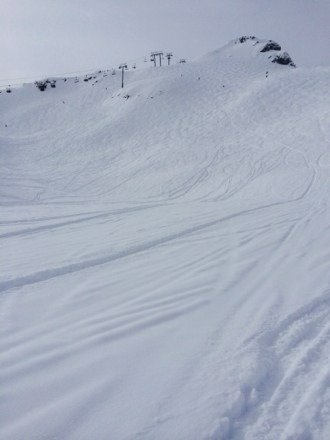 Fresh tracks was great today!