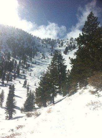 Epic day fresh powder. Motts and kilabrew canyons fresh lines everyware