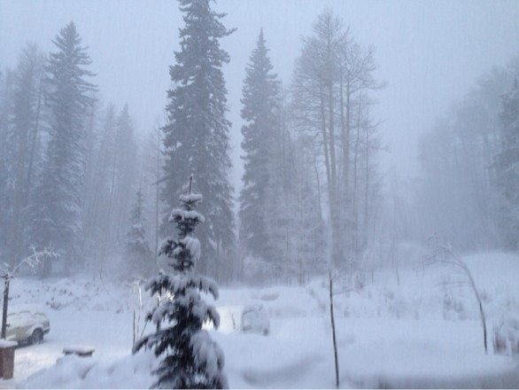 Great day today with nearly white out conditions!  About 5 inches today and still snowing!  Will be a great day on Friday!