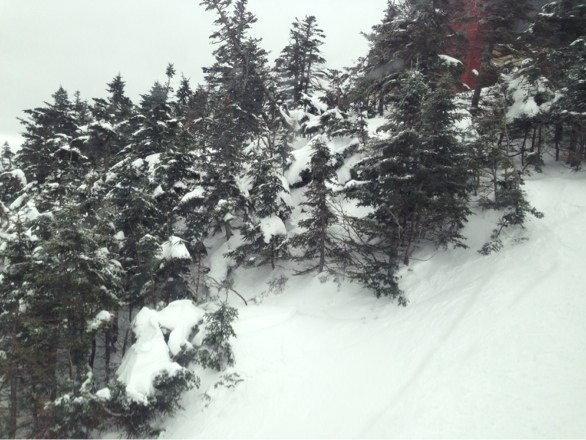 Yesterday was awesome!! Still freshies in the glades.