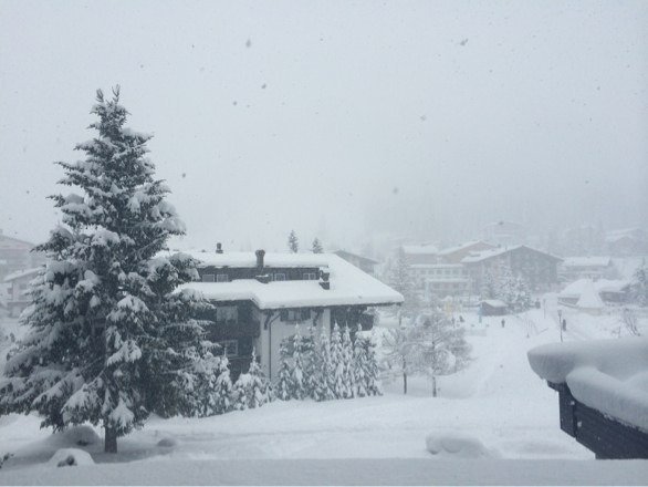 At least 50cm new powder