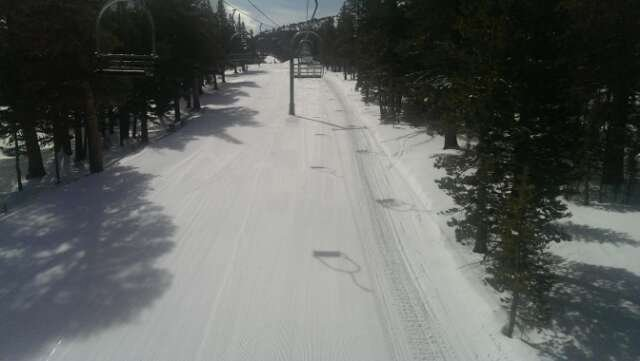 great snow. the snow has gone from spring skiing back to winter over night with more forecasted for the near future