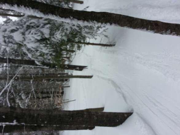 Great spring skiing!!