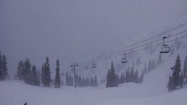 really gusty up top.poor visibility. powder everywhere.
