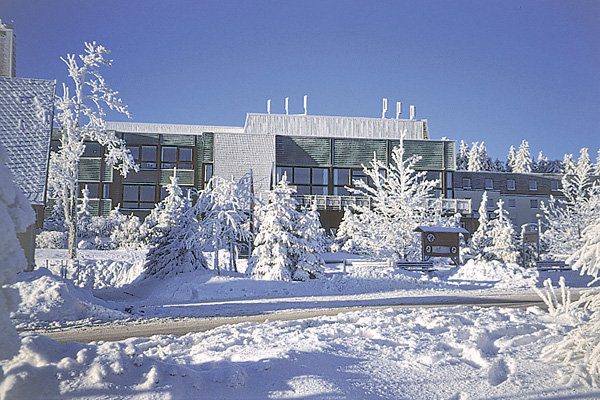 Best Western Waldhotel Stephanshöhe