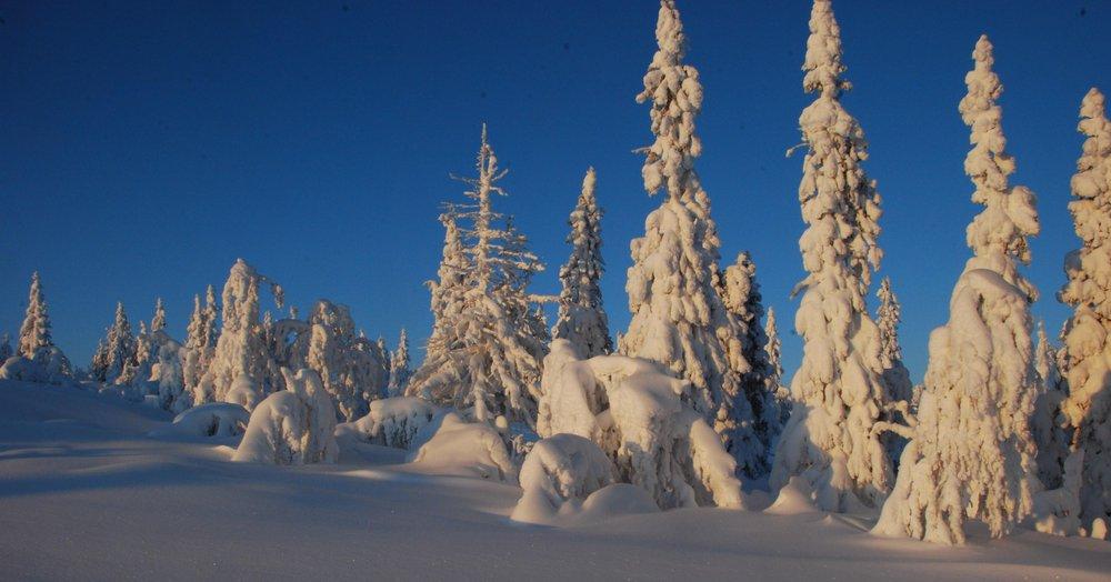 Vemdalen - © Snömannen @ Skiinfo Lounge