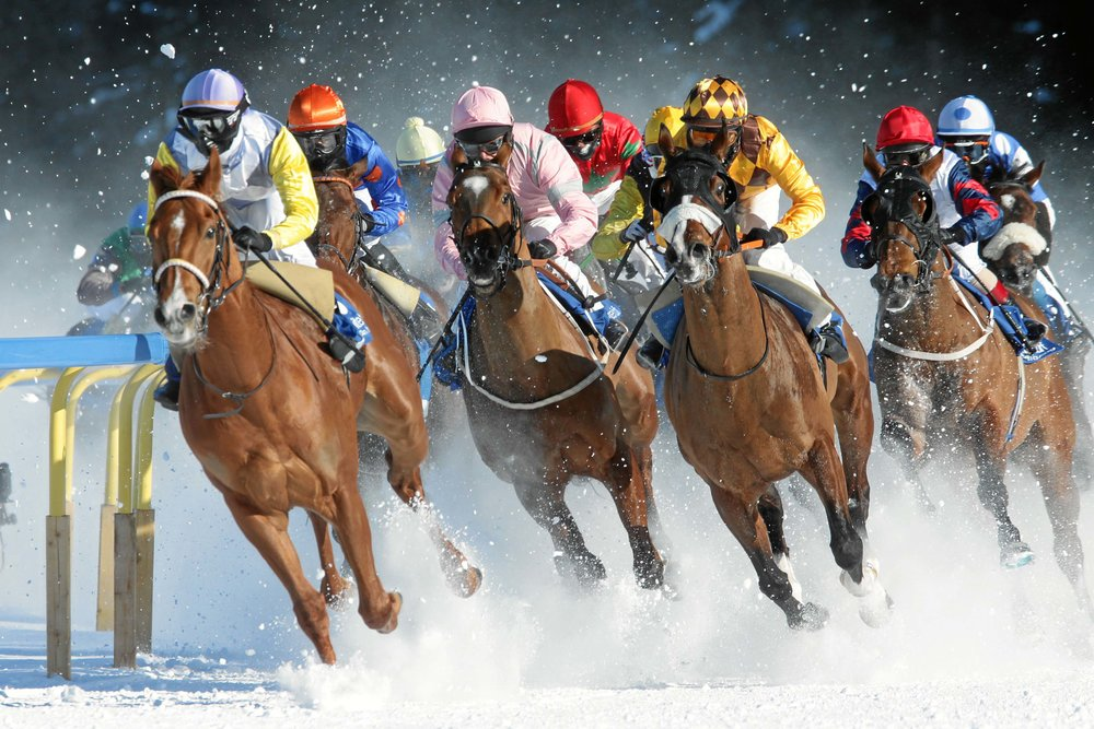 Horse races are popular at the resort - © swiss-image.ch/Andy Mettler