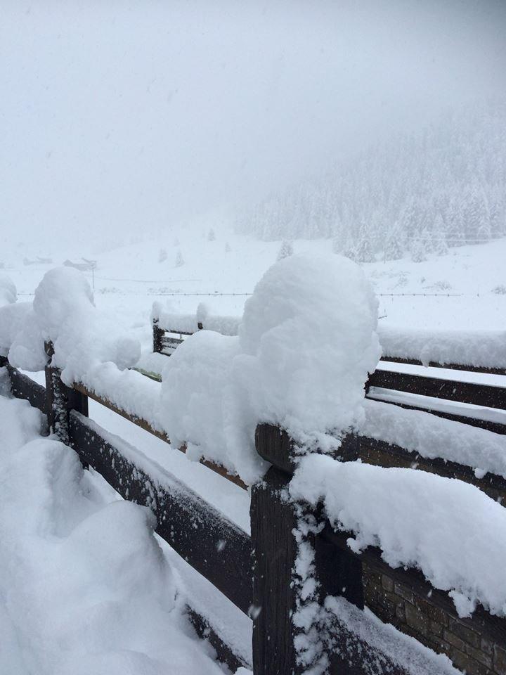Neve fresca a Livigno (16 nov 2014) - © Livigno