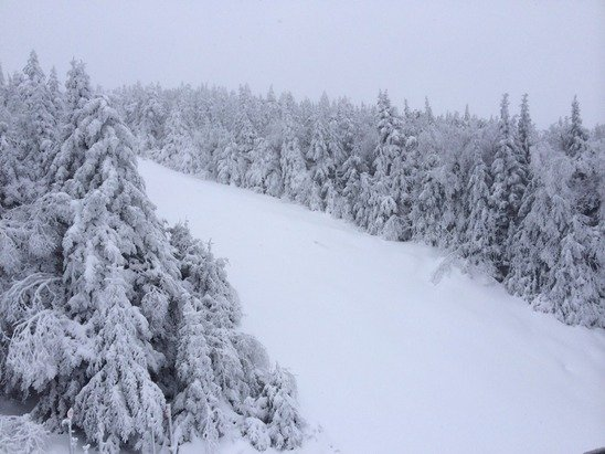 Snowed all day yesterday and still snowing lightly today.Some of the best conditions of the year out there.