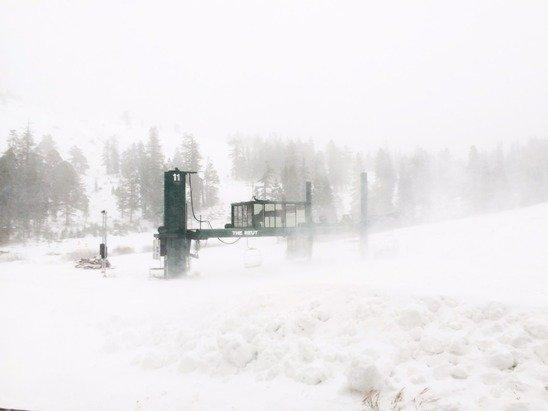 Snowing sideways up here