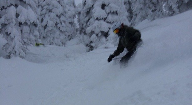 Well we certainly got lucky. 12 inches of fresh snow allowed them to open almost everything yesterday. There was powder everywhere and the tree skiing was amazing. The lift lines in the morning were horrible but it's that time of the year and it was the first great powder day.