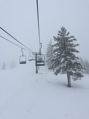 Spent a day on Saturday the 20th. Not bad. Foggy and windy, but lots of heavy powder. Some runs, such as just east of chair 3 backside, were blown icy. Wish they had opened more lifts. Did get in two runs where I was the first down.  Looking forward to a great season! Looking forward to a great season