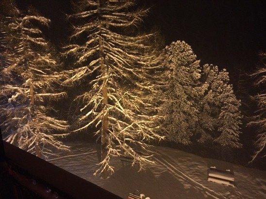 Il a neigé toute la journée, au moins 40 cms de poudreuse. :)