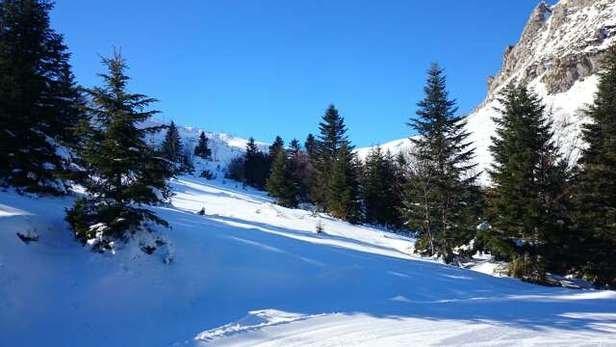 Neige très agréable bien préparer Pour le ski de fond.  tarif pour les raquettes Une aberration..... 6,50€.pour suivre un parcours flèché trop chère payé.