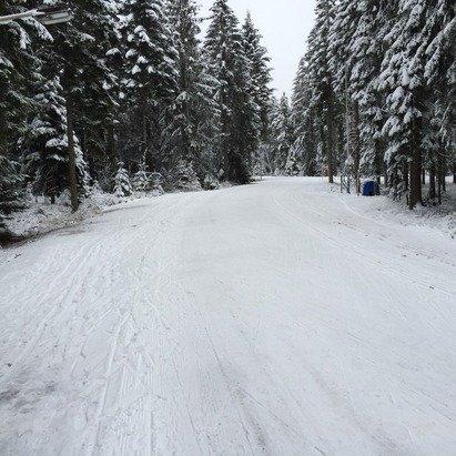 Loipe bei Casa 15cm Schnee nutzbar, Nachtloipe gut-sehr gut