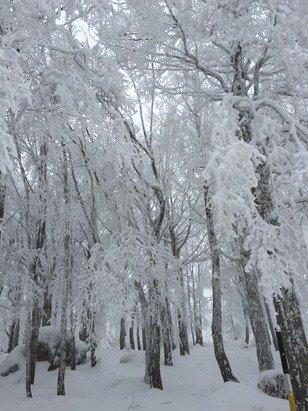 Beh con la neve ha tutto un altro aspetto...la vetta!!