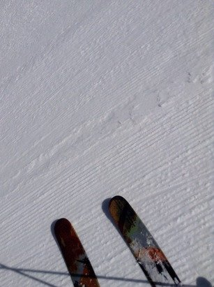 Some sweet windfill above and soft corn lower down. Best April Skiing Ever! From Raoul