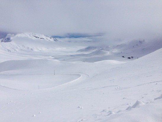 Neve fresca non battuta e nebbia....condizioni non ottimali a tratti pericoloso....ovviamente c'era pochissima gente...!