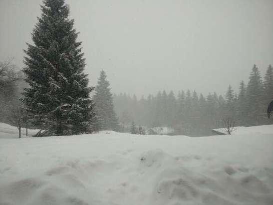Neige en continu depuis ce matin