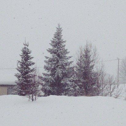 Superbe neige pour faire de la luge !