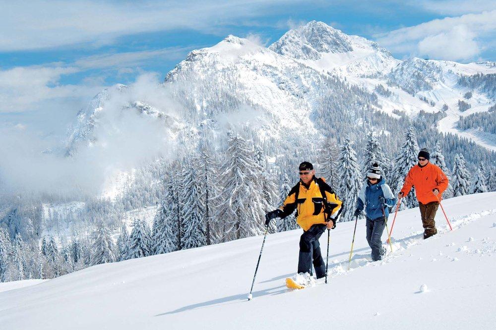 Snowshoers in Austria