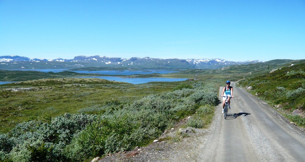 Ål - ©Ål Turist | Skiinfo Norge @ Skiinfo Lounge