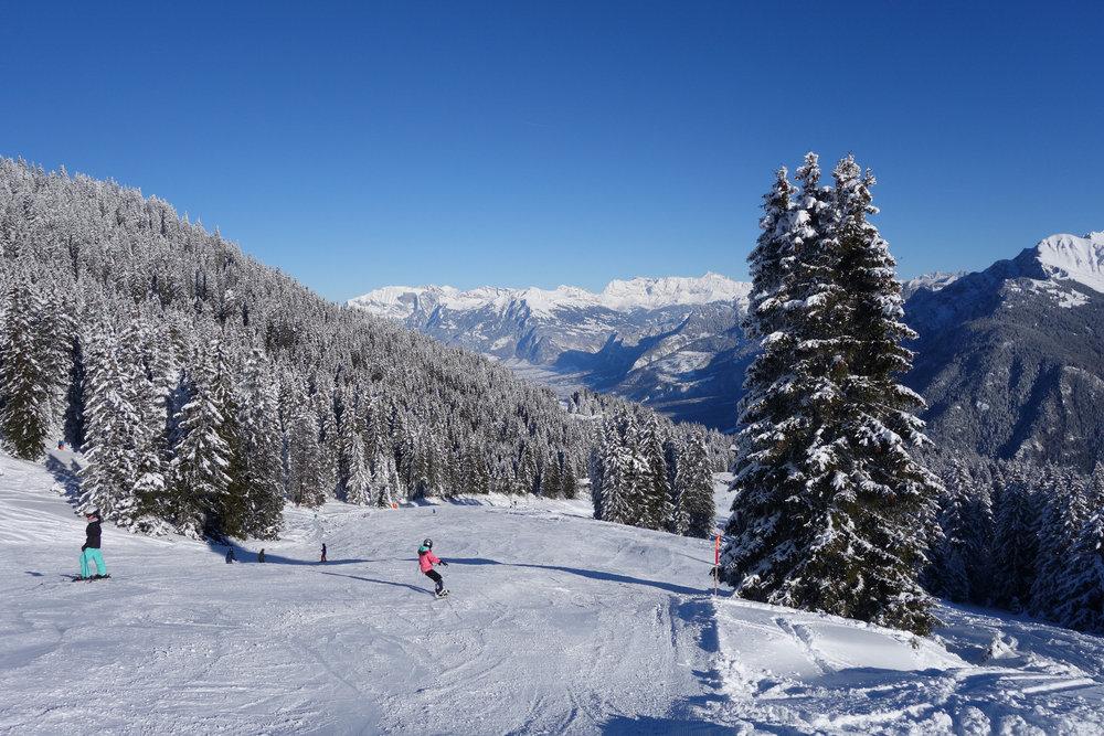 Die Abfahrten durchs dicht bewaldete Chur sind beeindruckend - © Chur Tourismus - Michael Christ