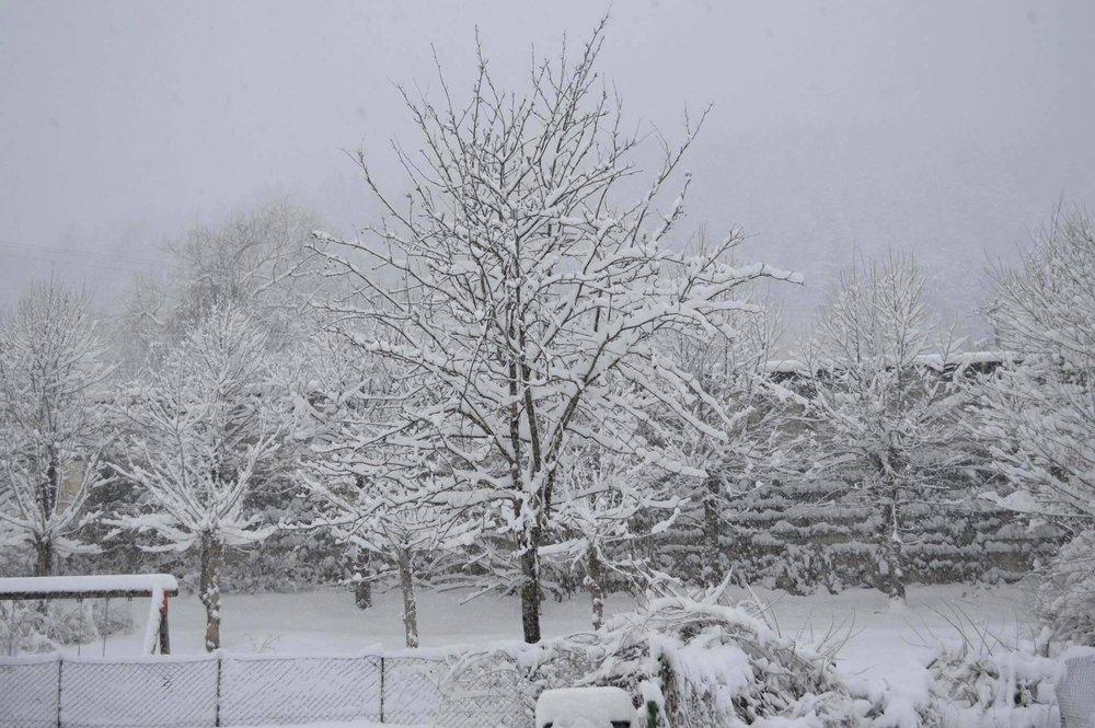Valle del Tesino, Trentino - 22 Febbraio 2015 - © Visittrentino.it