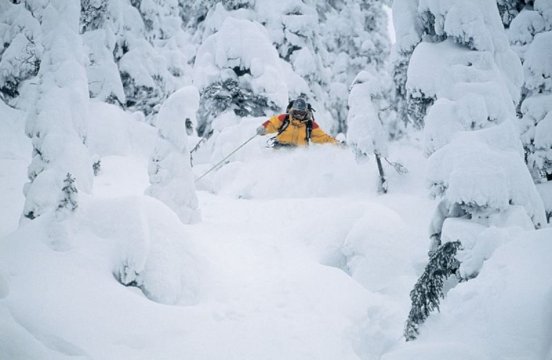 Skiing through powder.
