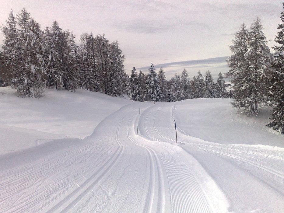 Alpe di Siusi / Seiser Alm - ©nordic57 @ Skiinfo Lounge