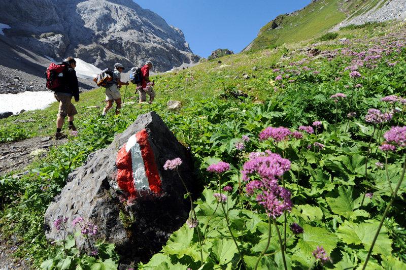 Unterwegs auf dem Karnischen Höhenweg - © bergleben.de