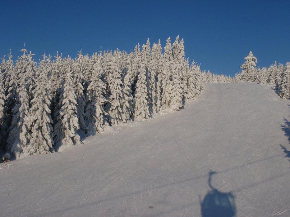 Braunlage Wurmberg - © skihase | Schneehase @ Skiinfo Lounge