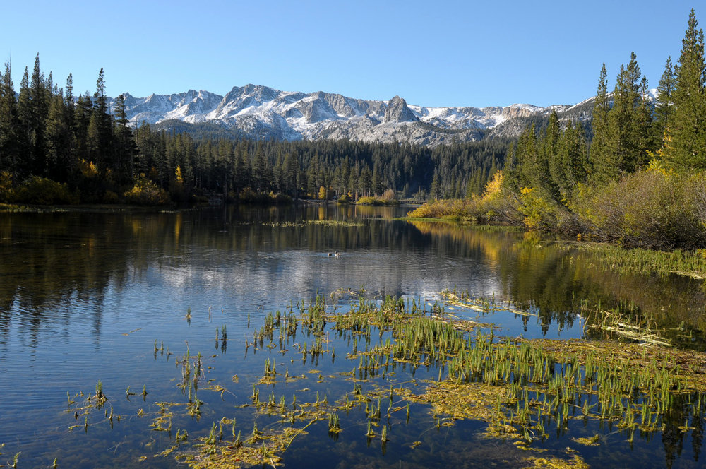 Lower Twin Lakes near Mammoth Mountain, CA.