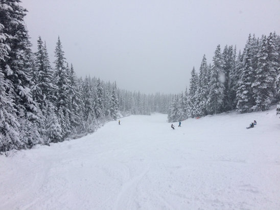 Lake Louise - Lots of fresh snow but only a couple of runs open and tons of people. Hopefully they open more runs.  - ©adrian