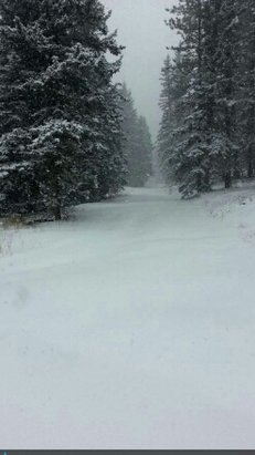 Angel Fire Resort - [! skireport_firsthandpost_pagetitle ] - © snowbunny