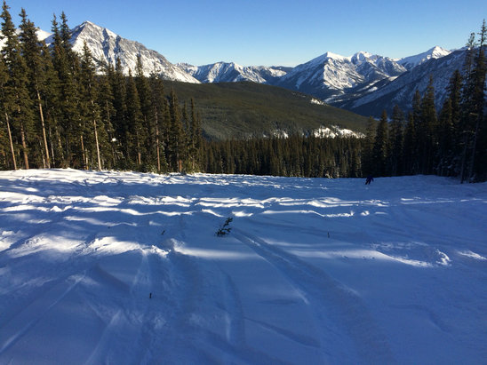 Nakiska Ski Area - Walking Buffalo.  Limited runs open, but all in good condition. - © iPhone